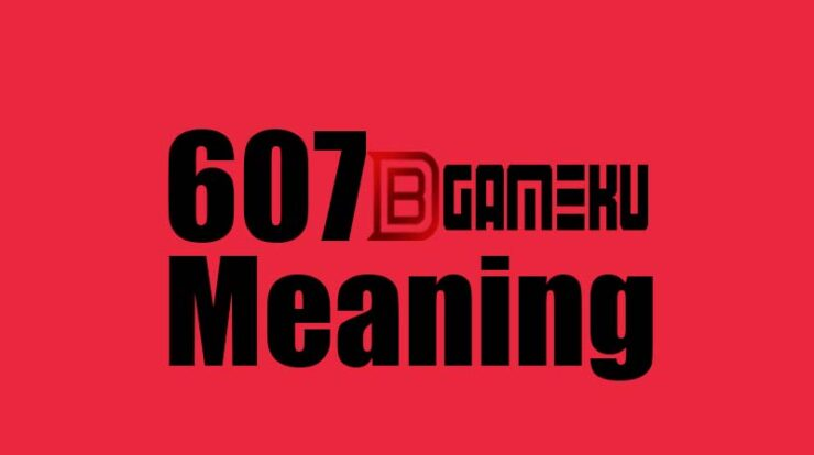 607 meaning in text