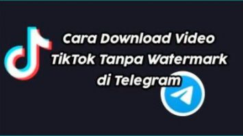 Cara Dapatkan HK Tiktok DL 2 Bot Unduh Video Tiktok No Watermark