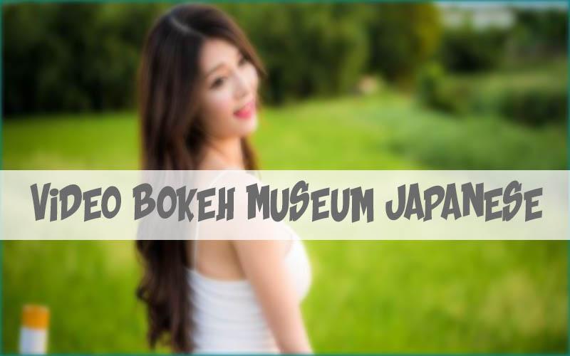 video bokeh museum japanese