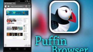 Link Unduh Puffin Pro Apk Terbaru Untuk